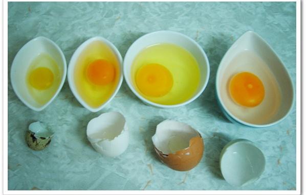 Mỗi loại trứng có giá trị dinh dưỡng khác nhau