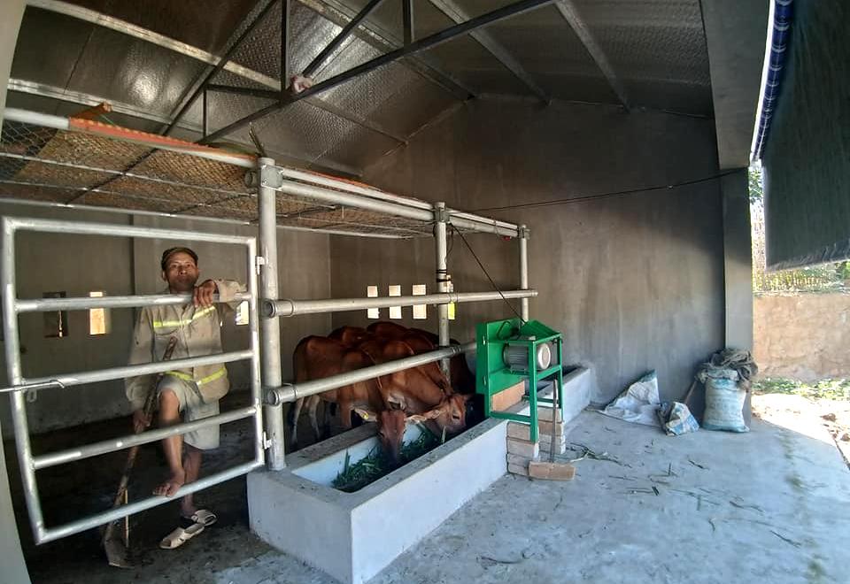 Chuồng bò trị giá hàng trăm triệu được xây dựng cho người Ơ Đu xây xôn xao dư luận