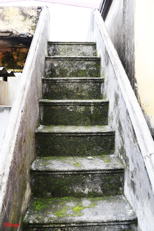 Cầu thang nhỏ nổi liền sân trên mái nhà với sân gạch đóng nhiều rong rêu. Tuổi cao nên bà cũng hạn chế di chuyển lên xuống.