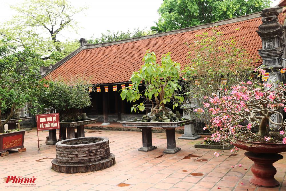 Như nhiều ngôi chùa khác ở miền Bắc, chùa Dâu cũng có khu vực dành cho thờ mẫu.