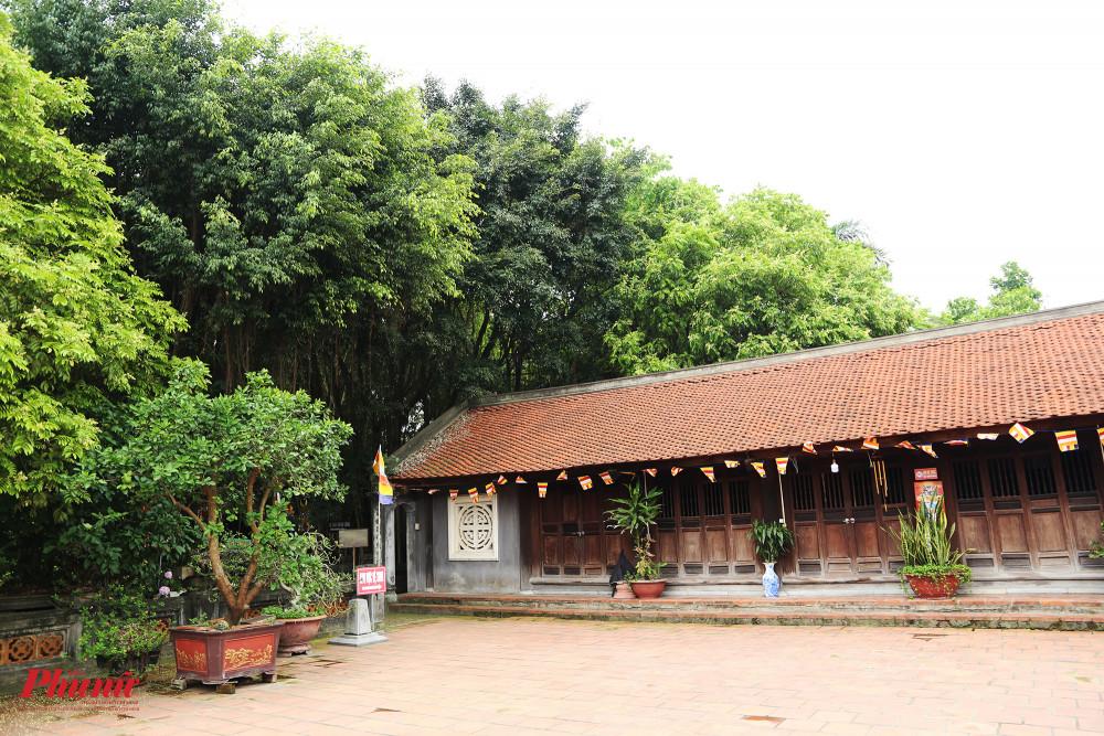 Chùa cũng có rất nhiều cây cổ thụ tạo bóng mát, vừa tăng vẻ trầm mặc cho không gian cổ xưa.