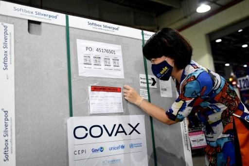 WHO kêu gọi G7 tài trợ cho việc phát triển và phân phối các mũi tiêm vắc-xin,