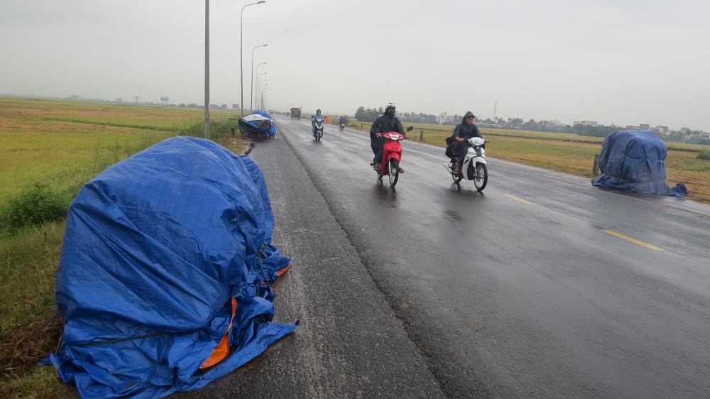 Phường Phú Đông (TP Tuy Hòa, Phú Yên)