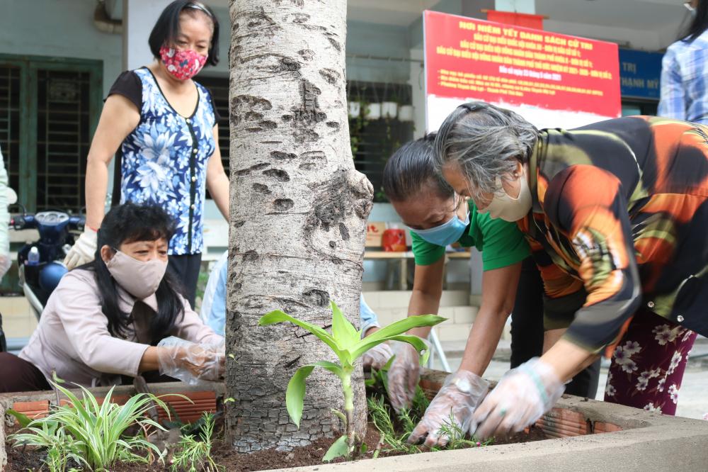 Dọn rác trong bồn và trồng thêm nhiều loại cây nhỏ trong khuôn viên chung cư.