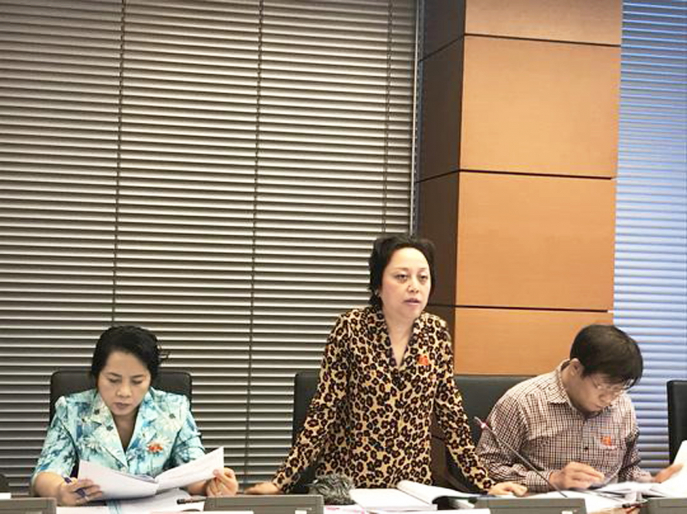 Nữ đại biểu Quốc hội Phạm Khánh Phong Lan (đứng) - ảnh: D.T.