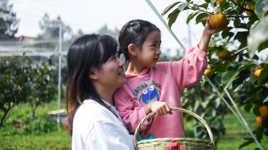 Du lịch ở nông thôn, du khách có thể trải nghiệm như những nông dân thực thụ