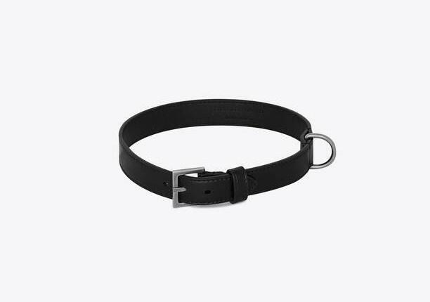 Chiếc vòng đeo cổ dành cho thú cưng của Saint Laurent  có giá 210 USD (gần 5 triệu đồng).