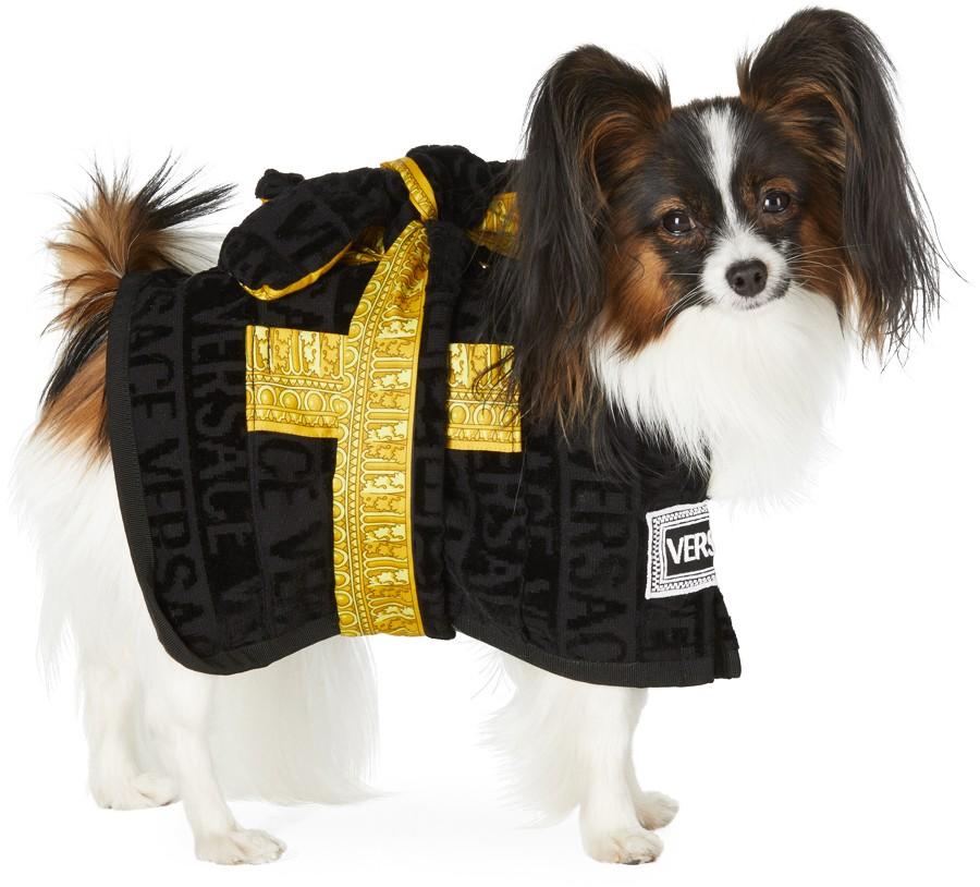 Áo khoác cho thú cưng của Versace trị giá 250 USD (khoảng 5,8 triệu đồng).
