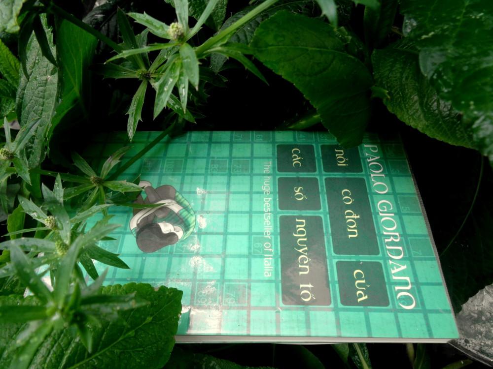 quyển sách nỗi cô đơn của các số nguyên tố. Hình: Nhã Nam