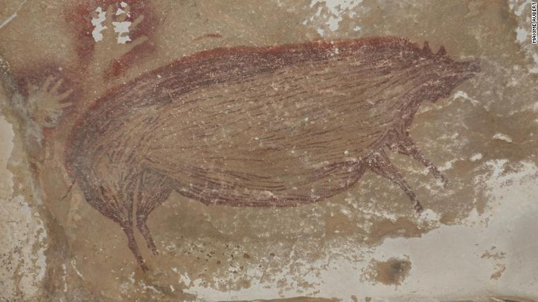 Bức tranh về chú heo ngộ nghĩnh trong hang động.