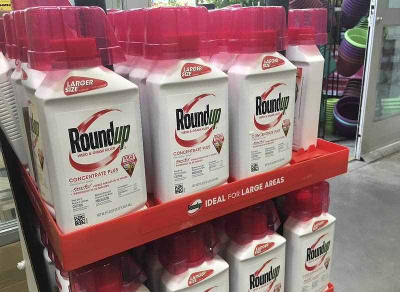 Tòa phúc thẩm liên bang giữ nguyên mức bồi thường 25 triệu đô la trong vụ án thuốc diệt cỏ của công ty Monsanto gây ung thư - Ảnh: AP