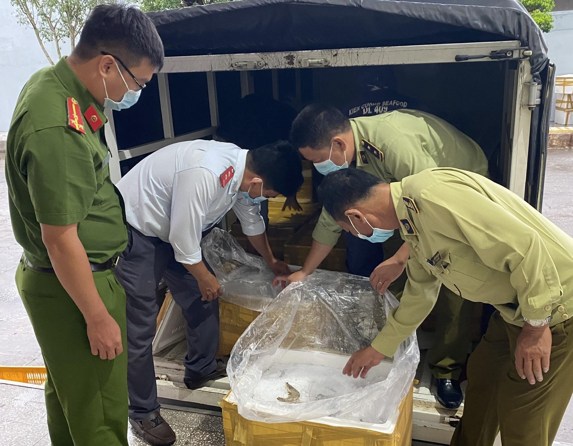 300kg tôm thẻ chân trắng được bơm bột Agar đang trên đường đi tiêu thụ thì bị cơ quan chức năng phát hiện, thu giữ. Ảnh QLTT