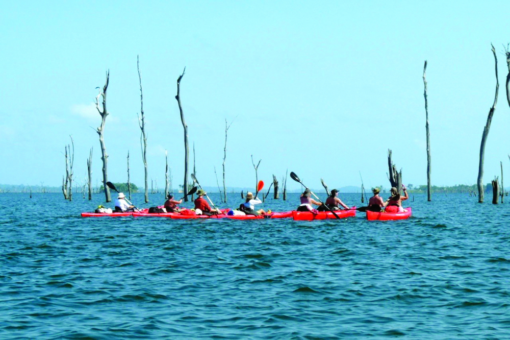 Chèo thuyền kayak trong lòng hồ Brokopondo