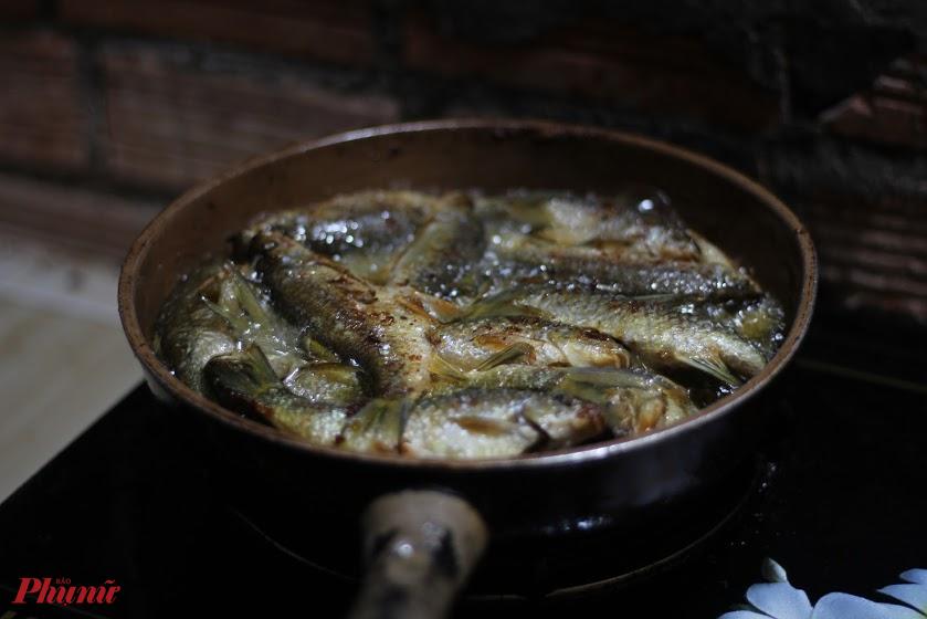 Cá suối bắt về, chiên, nướng, kho hay nấu canh đềun ngon. Ảnh: An Huỳnh