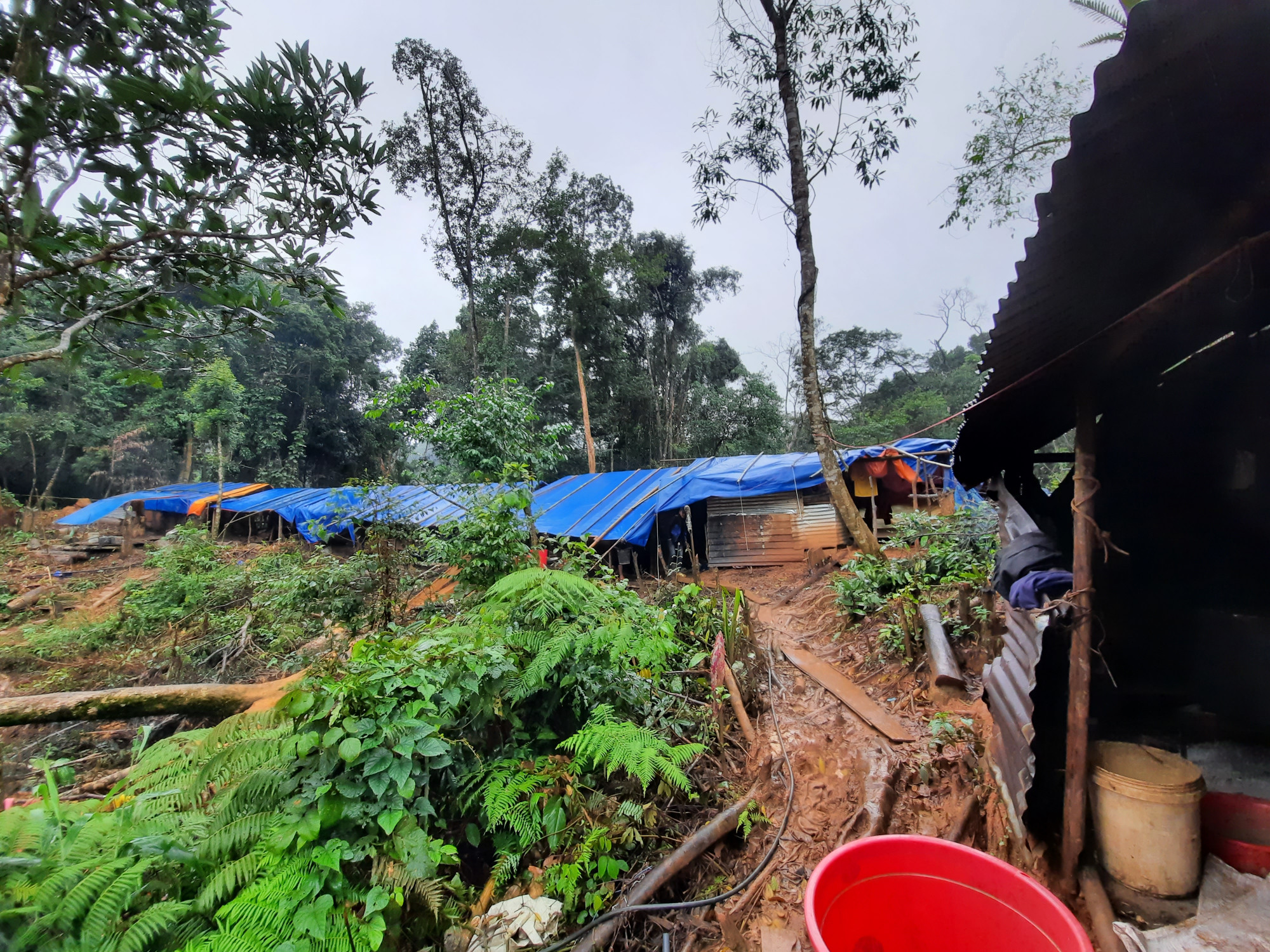 Từ khi cơn lũ dữ quét ngang, xóa sổ thôn 6 xã Phước Lộc, những hộ dân này vẫn bám trụ trong những túp lều tạm, chờ ngày dựng nhà mới.
