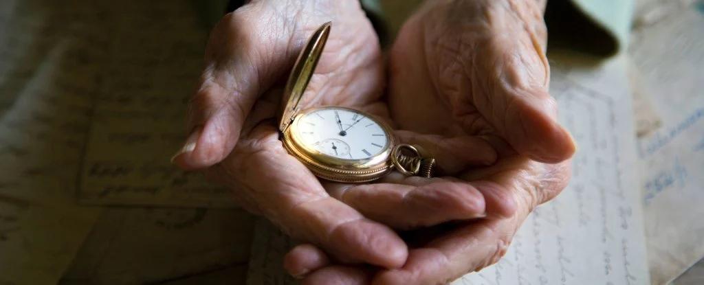 Nghiên cứu cho thấy con người có thể sống thọ đến 150 tuổi - Ảnh: