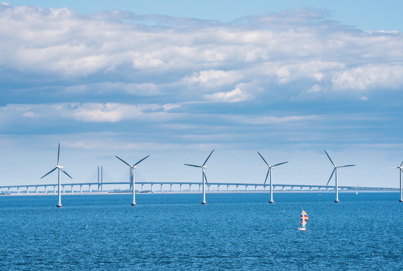 Phối cảnh cầu nối Cà Mau - Gành Hào - Đông Hải cùng trọng điểm phát triển điện gió của Bạc Liêu
