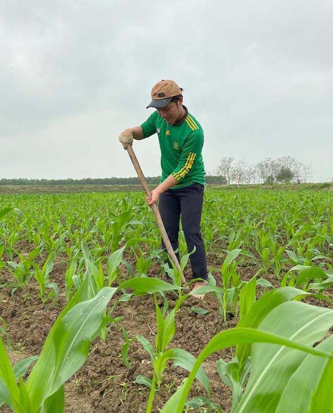 Nghệ sĩ Xuân Vương về quê phụ gia đình làm nông