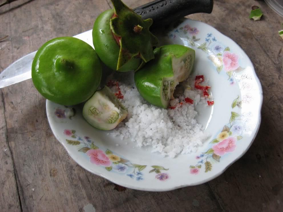 Trái bần chua tên khoa học là Sonneratia caseolaris, loại này rất phổ biến và thường mọc ở ven sông. Hình dạng trái to tròn, nhìn mọng và có vị chua kèm với độ giòn cứng. Vì thế, trái bần chua dù chín hay còn non thì cũng rất được ưa chuộng để nấu món canh chua.Quả bần có thể ăn sống, chấm muối ớt hoặc chấm mắm. Ngoài ra, loại quả này còn được dùng để chế biến thành nhiều món ăn có vị chua ngọt như canh chua.