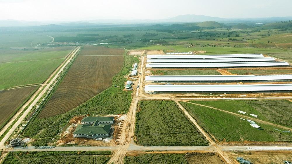 Trang trại đầu tiên trong tổ hợp bò sữa Lao-Jagro tại Xiêng Khoảng của Vinamilk đã hoàn thành các hạng mục xây dựng cơ bản (ảnh chụp tháng 5/2021)