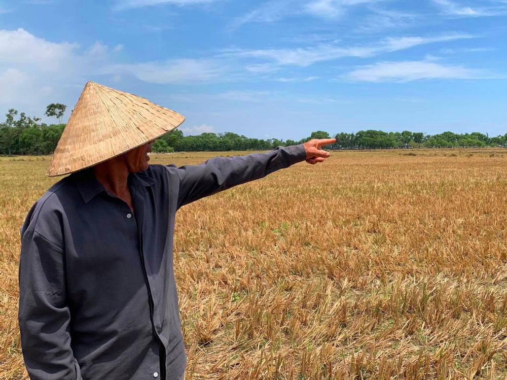 Ông Mai Bá Mọt (thôn Vĩnh Trình, thị trấn Phú Đa, H.Phú Vang, tỉnh Thừa Thiên - Huế) chờ nước để làm vụ hè thu bên đám ruộng khô cháy - Ảnh: Thuận Hóa
