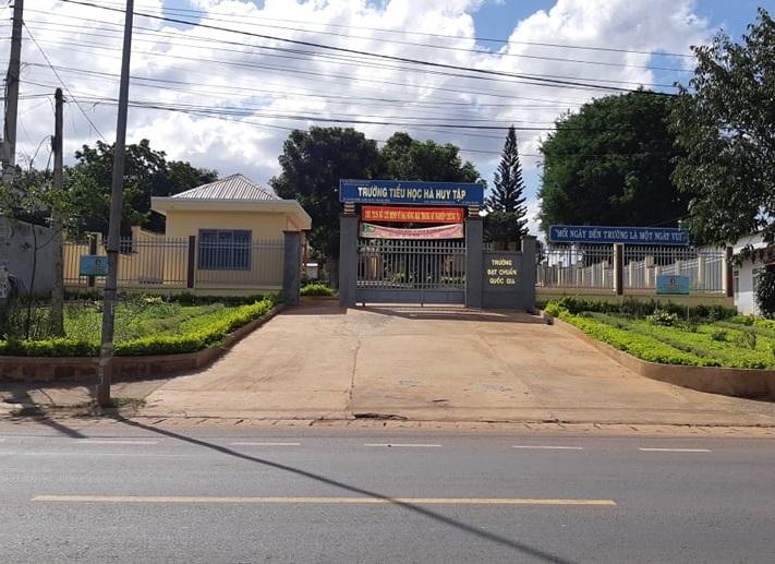 Trường tiểu học Hà Huy Tập