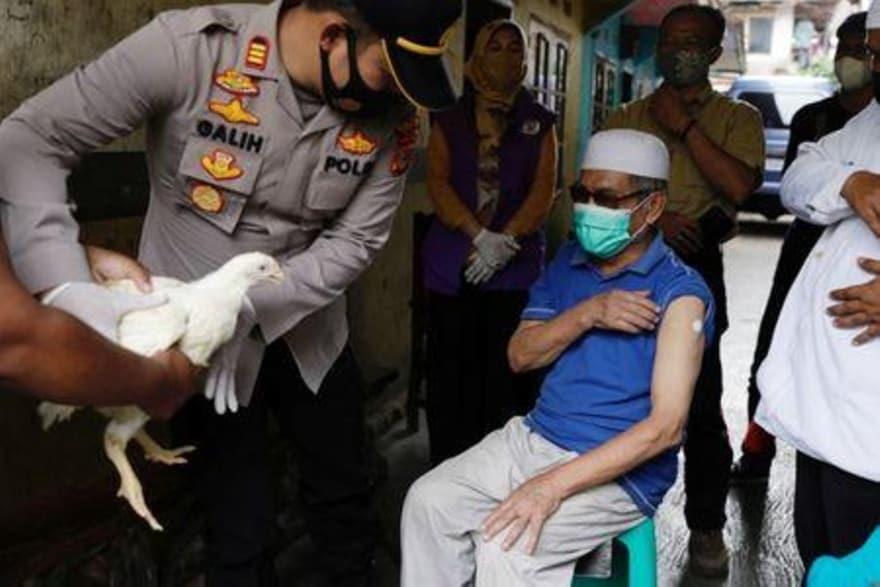 Sáng kiến tặng gà để tiêm vắc xin được người dân Indonesia hưởng ứng - Ảnh: Willy Kurniawan/Reuters