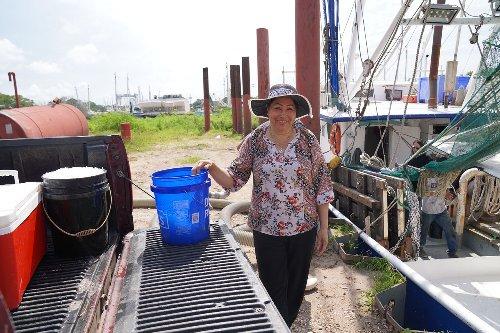 Phuong Thi Nguyen bỏ thêm đá vào thùng làm lạnh tại bến tàu ở Bayou La Batre - Ảnh: AL.com