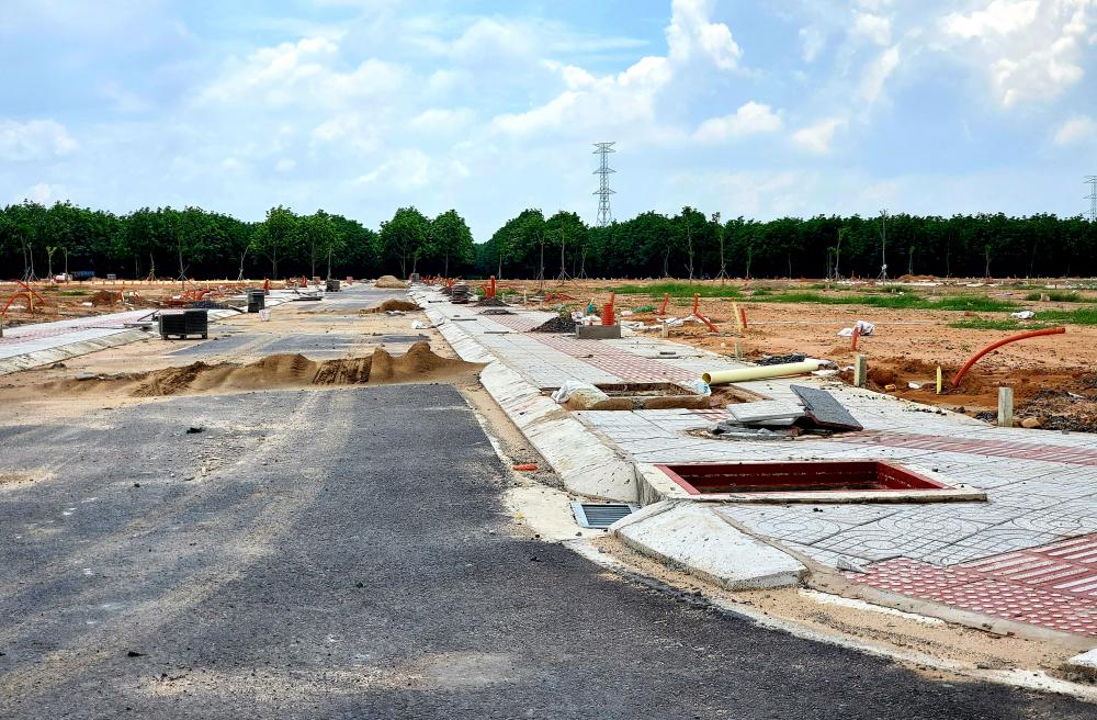 Phó chủ tịch UBND tỉnh Võ Tấn Đức đã giao Ban Quản lý dự án đầu tư xây dựng tỉnh khẩn trương lập hồ sơ điều chỉnh quy hoạch mặt cắt ngang một số tuyến đường có bề rộng hẹp tại khu tái định cư Lộc An - Bình Sơn để thực hiện mở rộng.