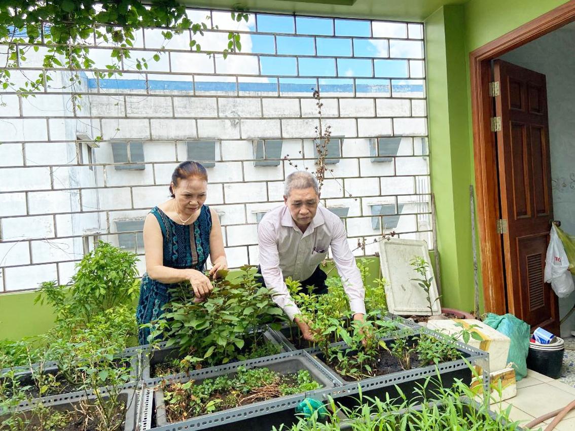 Vợ chồng  dì Thơm  cùng tạo mảng xanh cho gia đình trong những ngày giãn cách xã hội