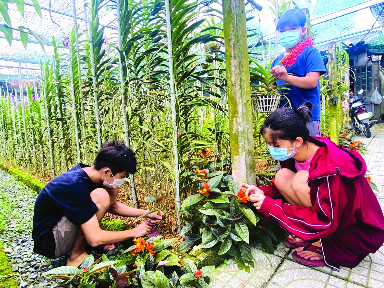 Trẻ được phụ huynh chỉ dẫn cách chăm sóc cây cảnh trong vườn nhà ẢNH: NGUYỄN VĂN CẢI