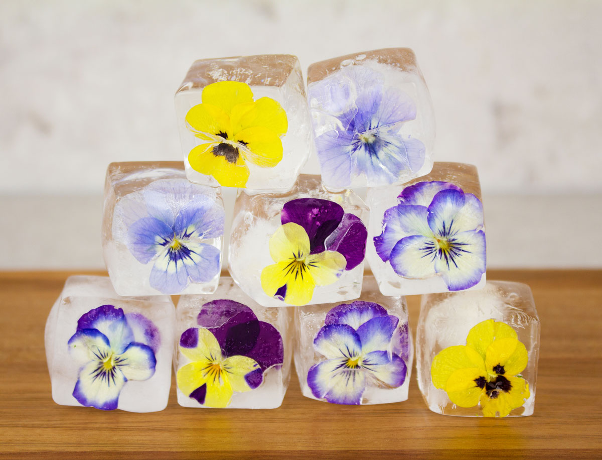 Những viên đá hoa có thể không tăng thêm vị cho bất kì món nước nào nhưng không phải sự có mặt của chúng, khiến ly nước của bạn thêm sống động.