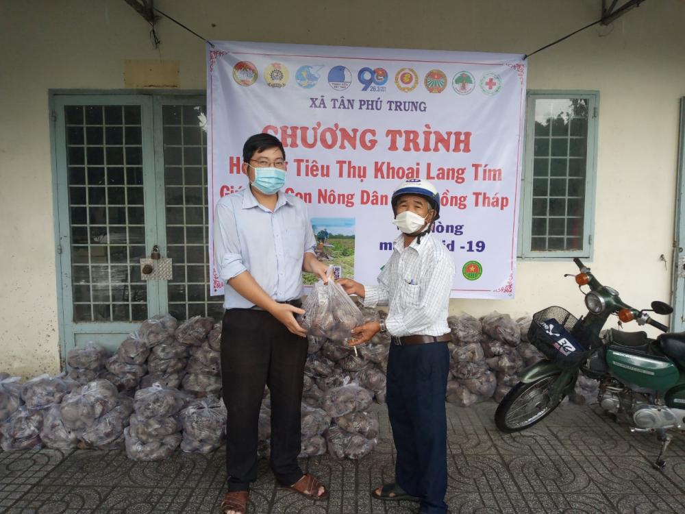 Cán bộ, hội viên nông dân TP.HCM bán giúp khoai lang tím cho nông dân tỉnh Đồng Tháp.