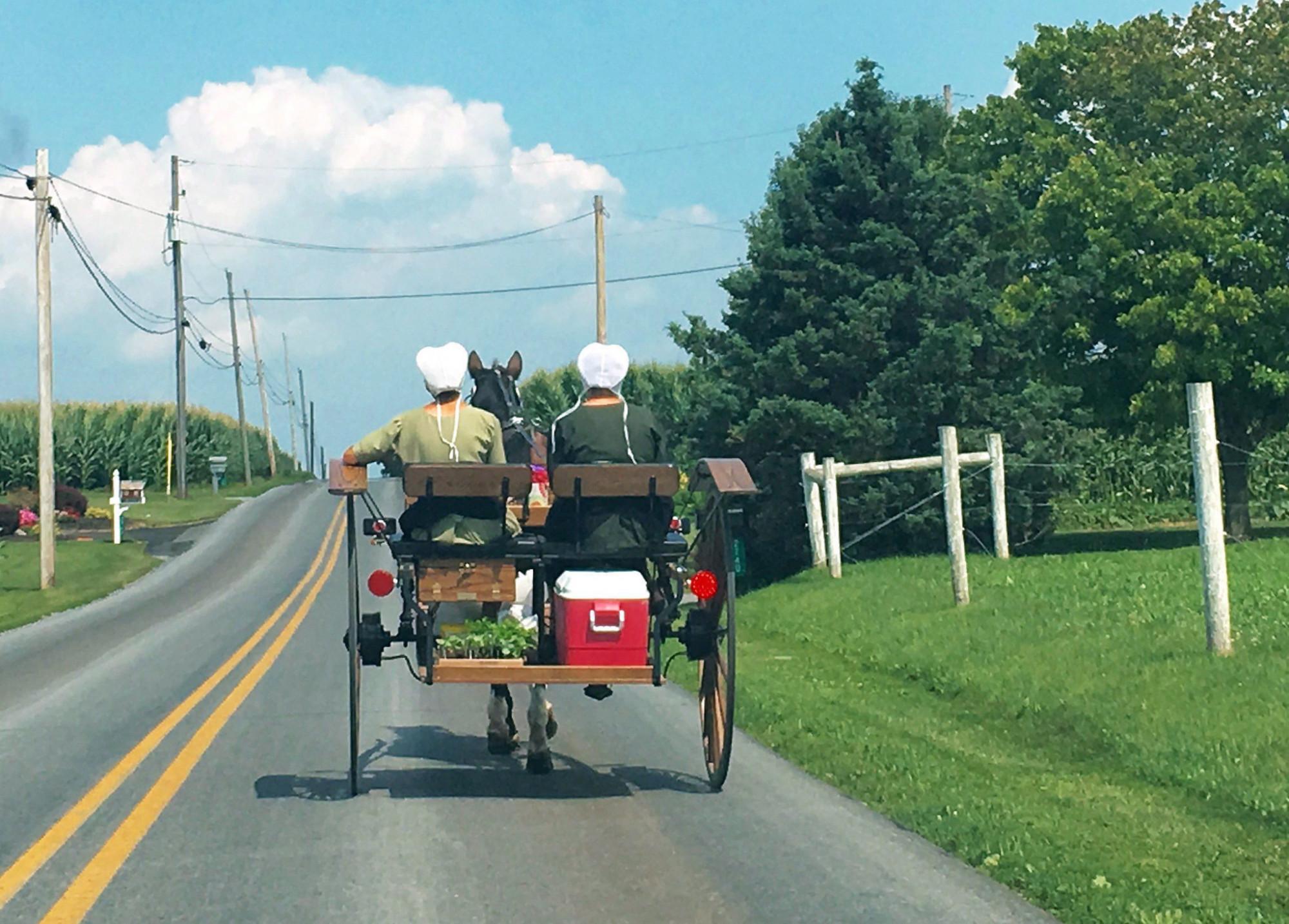 Người Amish cho rằng, họ đã đạt đến ngưỡng miễn dịch cộng đồng rồi. Và vì vậy, họ không cần phải tiêm vắc xin nữa - Ảnh: Alex Panetta