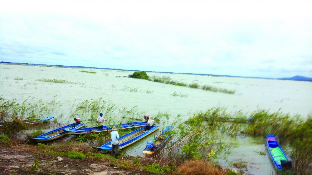 Mép nước vùng bán ngập của đảo Nhím