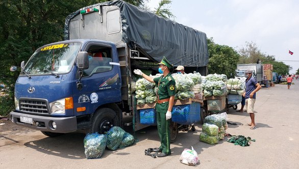 Hàng hóa vẫn được lưu thông về TPHCM sau khi được kiểm dịch đầy đủ
