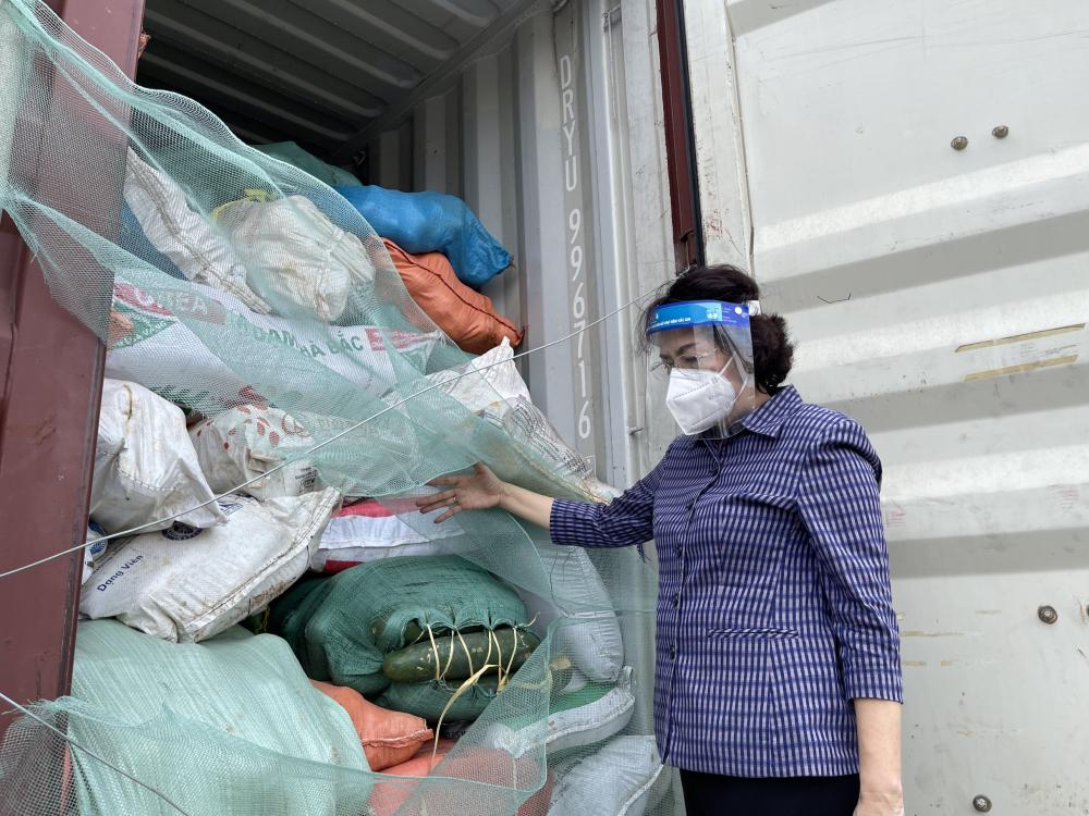 """Số hàng hóa gồm lương thực, thực phẩm, rau củ quả các loại được vận động từ chương trình """"Tuần lễ vì Thành phố mang tên Bác"""" do Ủy ban MTTQ Việt Nam tỉnh Nghệ An phát động từ ngày 11/7."""
