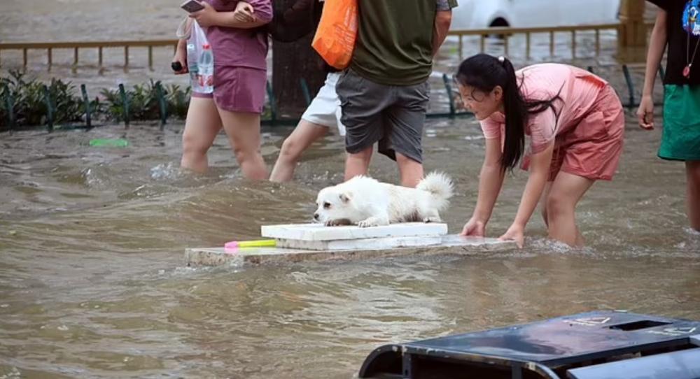 Khoảng 200.000 cư dân Hà Nam được sơ tán khẩn cấp hôm 20/7 vì mưa lũ