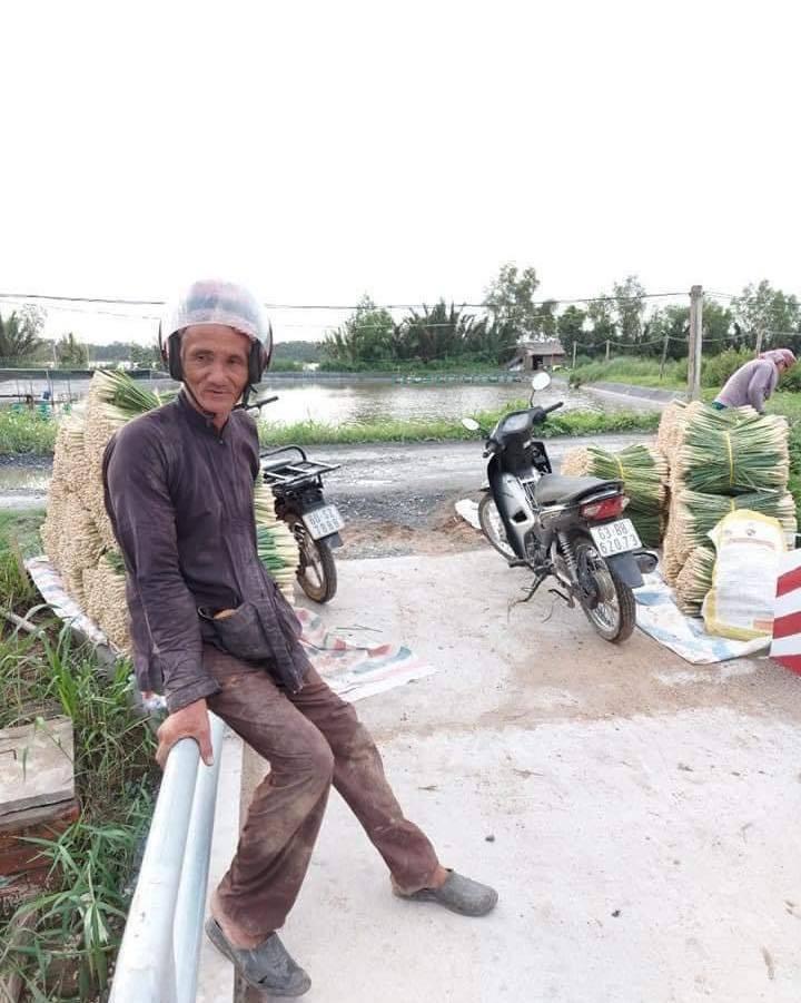 Hình ảnh lão nông miền Tây thu hoạch sả gửi tặng người Sài Gòn khiến dư luận xúc động