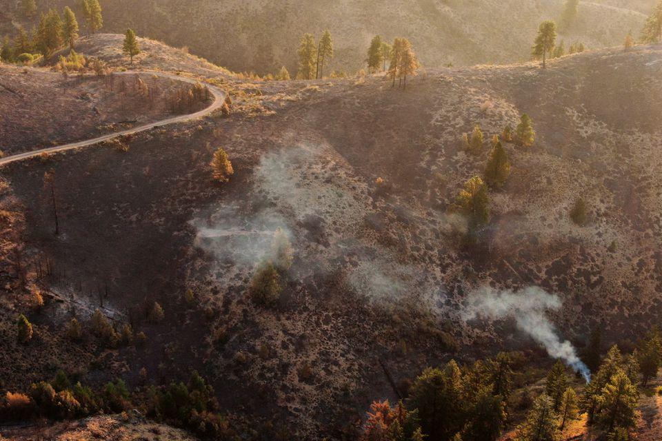 Một đám cháy rừng nhìn từ trên cao - Ảnh: Reuters