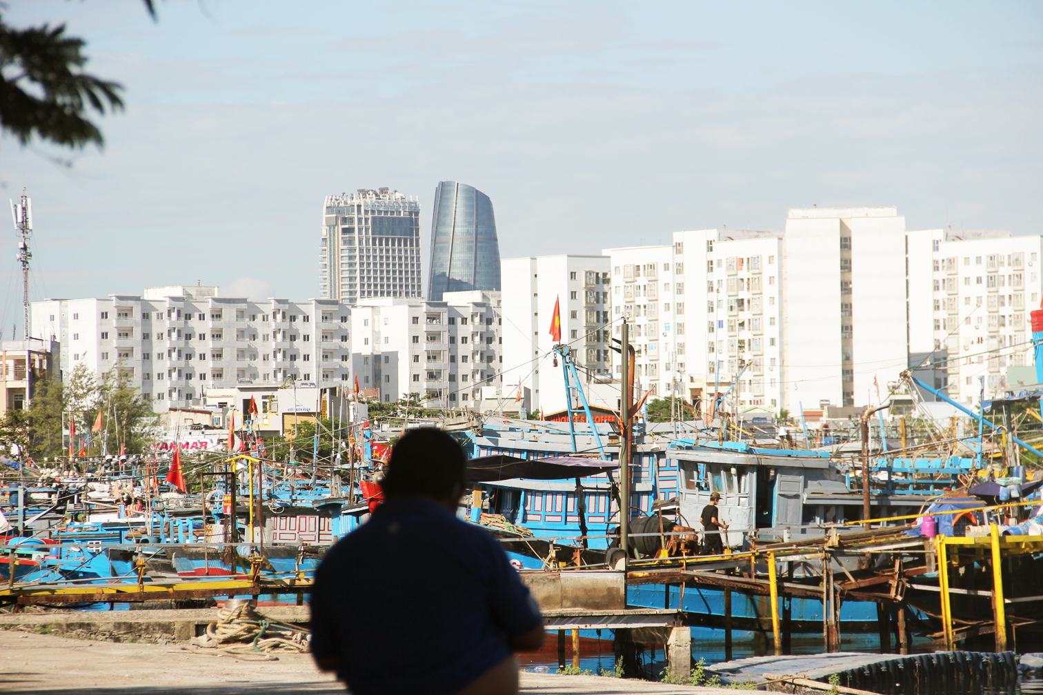 Nguồn cung cấp hải sản cho TP.Đà Nẵng đang gặp khó khăn do cảng cá Thọ Quang bị COVID-19 xâm nhập - ẢNH: ĐÌNH DŨNG