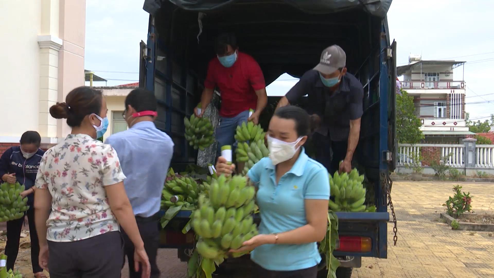 Các ngành đoàn thể Phú Yên kết nối tiêu thụ nông sản cho nông dân do ảnh hưởng dịch bệnh COVID-19