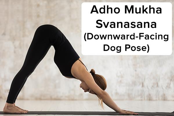 3. Adho mukha svanasana (chó hướng xuống) adho mukha svanasana (tư thế chó quay mặt xuống) Bắt đầu bằng cách cúi người bằng bốn chân để đảm nhận vị trí trên mặt bàn. Thở ra và từ từ nâng hông lên đồng thời duỗi thẳng khuỷu tay và đầu gối để cơ thể giống như hình chữ V ngược , và các ngón chân của bạn nên hướng ra ngoài. Đẩy lòng bàn tay xuống đất và duỗi thẳng cổ. Hướng ánh nhìn về phía rốn của bạn. Giữ nguyên tư thế này trong vài giây. Thả tư thế bằng cách uốn cong đầu gối của bạn và trở lại vị trí ban đầu.