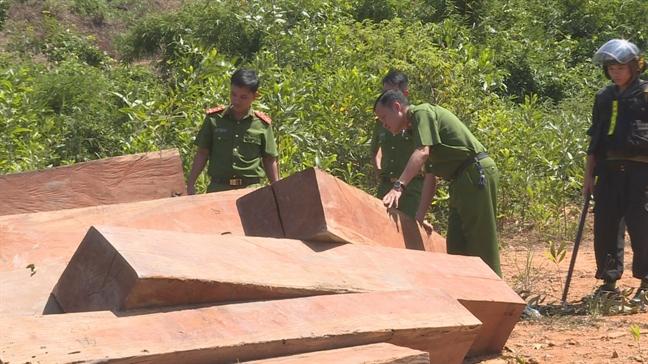 Một vụ phá rừng trên diện tích rừng do công ty Lâm nghiệp Ea Kar quản lý bị cơ quan công an phát hiện