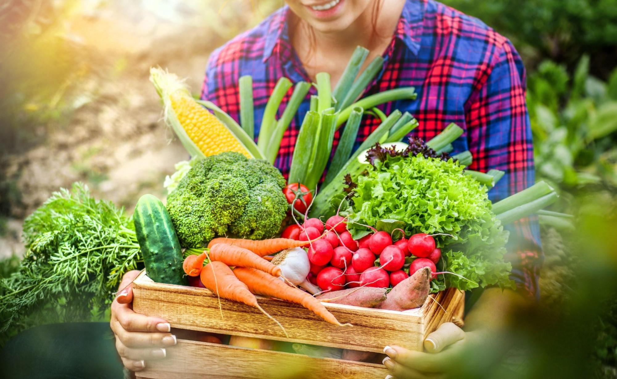 Rau xanh đồng thời giúp duy trì năng lượng và tâm trạng tích cực mỗi ngày - Ảnh: Shutterstock