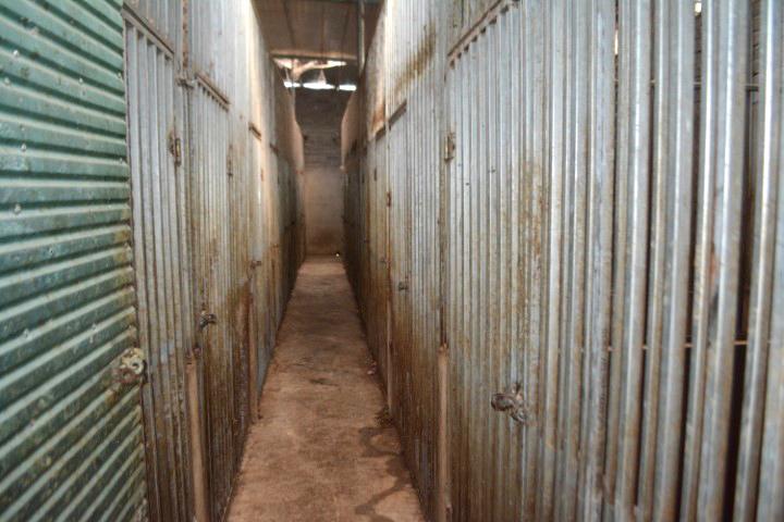 Hệ thống chuồng trại nuôi hổ như nuôi heo được xây dựng trong nhà dân
