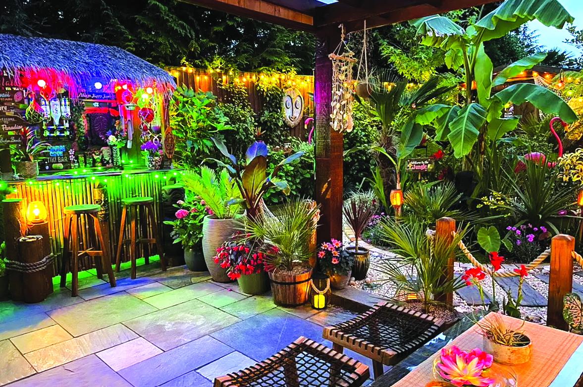 Khu rừng nhiệt đới tuyệt đẹp của Hannah - ẢNH: CATERS NEWS