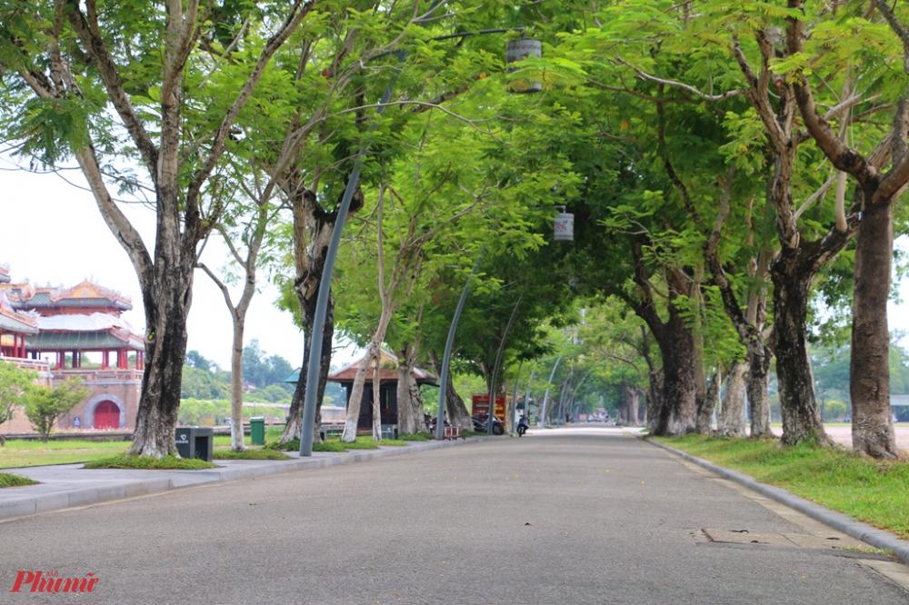 Đường 23/8 trước cổng Ngọ Môn nơi ghi dấu kỷ niệm Cách mạng Tháng 8 măm 1945 ở Huế,