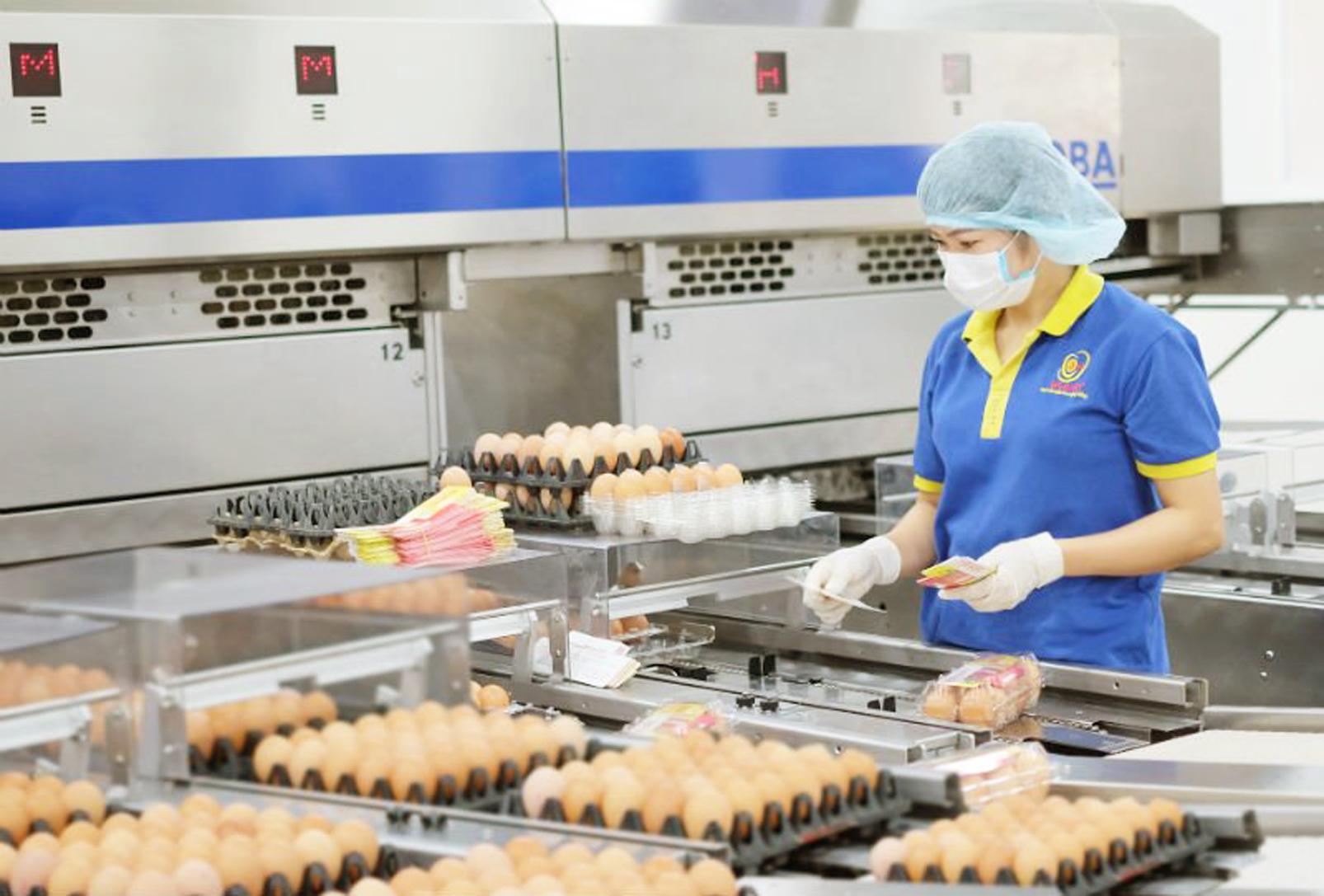 Các doanh nghiệp chế biến thực phẩm Việt Nam đang nỗ lực giữ vững sản xuất, cung ứng lương thực, thực phẩm cho người dân - ẢNH: THANH HOA
