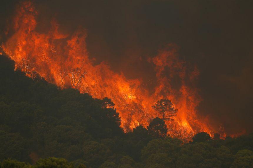 Ngọn lửa bùng phát ở vùng núi Sierra Bermeja, ngày 8/9.
